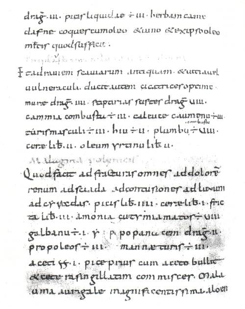 Abb. 11: Der «Kodex Bodmer», angeblich Fulda, 1. Hälfte des 9. Jhs. auf Pergament, das aus England importiert wurde. Der Kodex enthält einen bis zum 15. Jh. völlig unbekannten Hippokrates-Text. In Fulda besaßen die Mönche in der 1. Hälfte des 9. Jhs. ausweislich ihrer Bücherverzeichnisse allerdings noch nicht einmal eine komplette Hl. Schrift und waren des Schreibens nur bedingt mächtig.